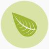 icone meio ambiente